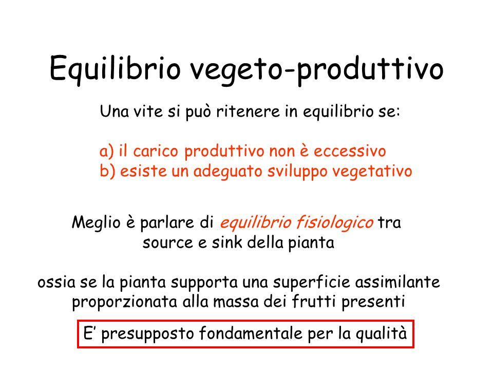 Equilibrio vegeto-produttivo