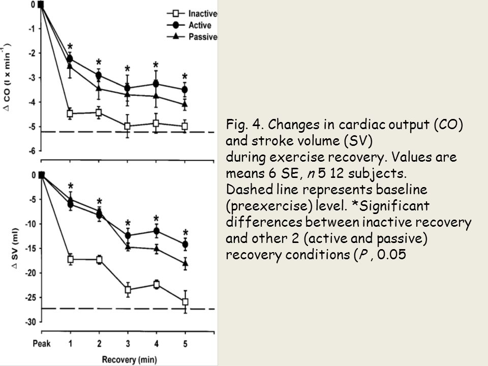 Fig. 4. Changes in cardiac output (CO) and stroke volume (SV)