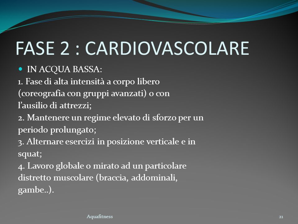 FASE 2 : CARDIOVASCOLARE