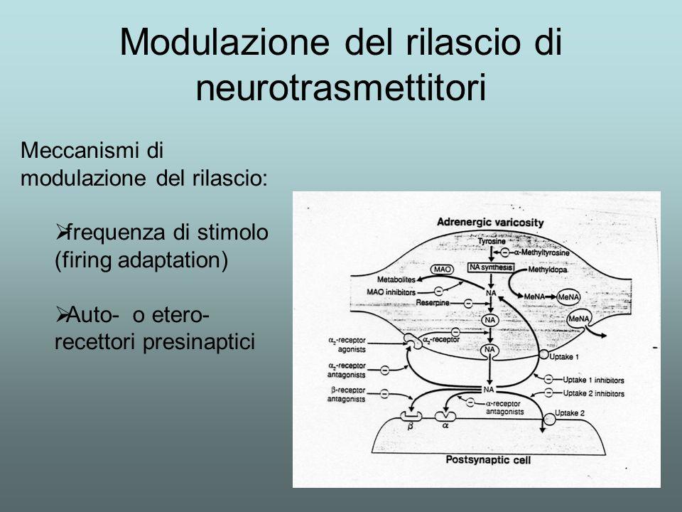 Modulazione del rilascio di neurotrasmettitori
