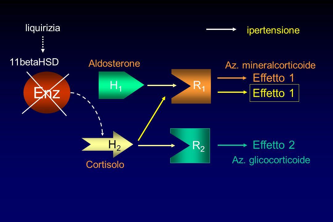 Enz H1 R1 Effetto 1 Effetto 1 H2 R2 Effetto 2 liquirizia ipertensione