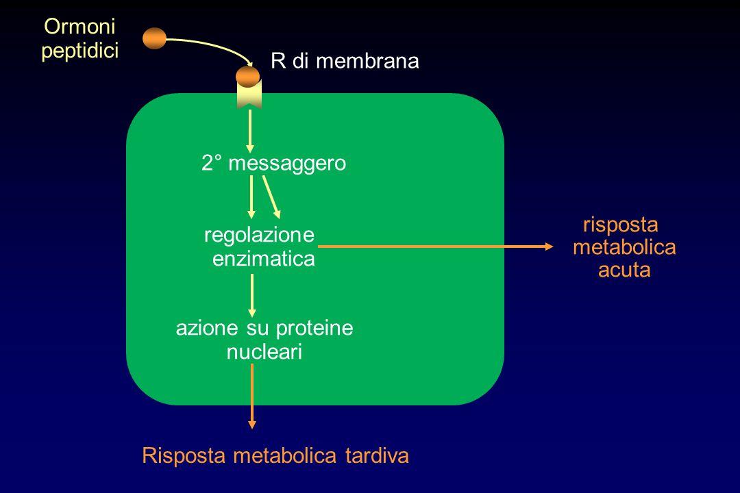 Risposta metabolica tardiva