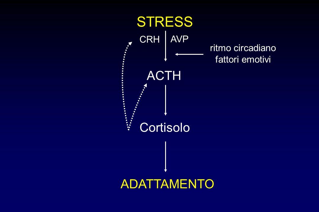 STRESS ACTH Cortisolo ADATTAMENTO CRH AVP ritmo circadiano