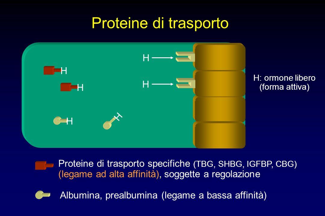 Proteine di trasporto H H H H H H