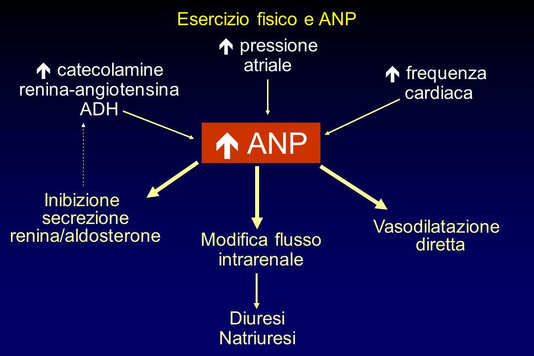 Modifica flusso intrarenale