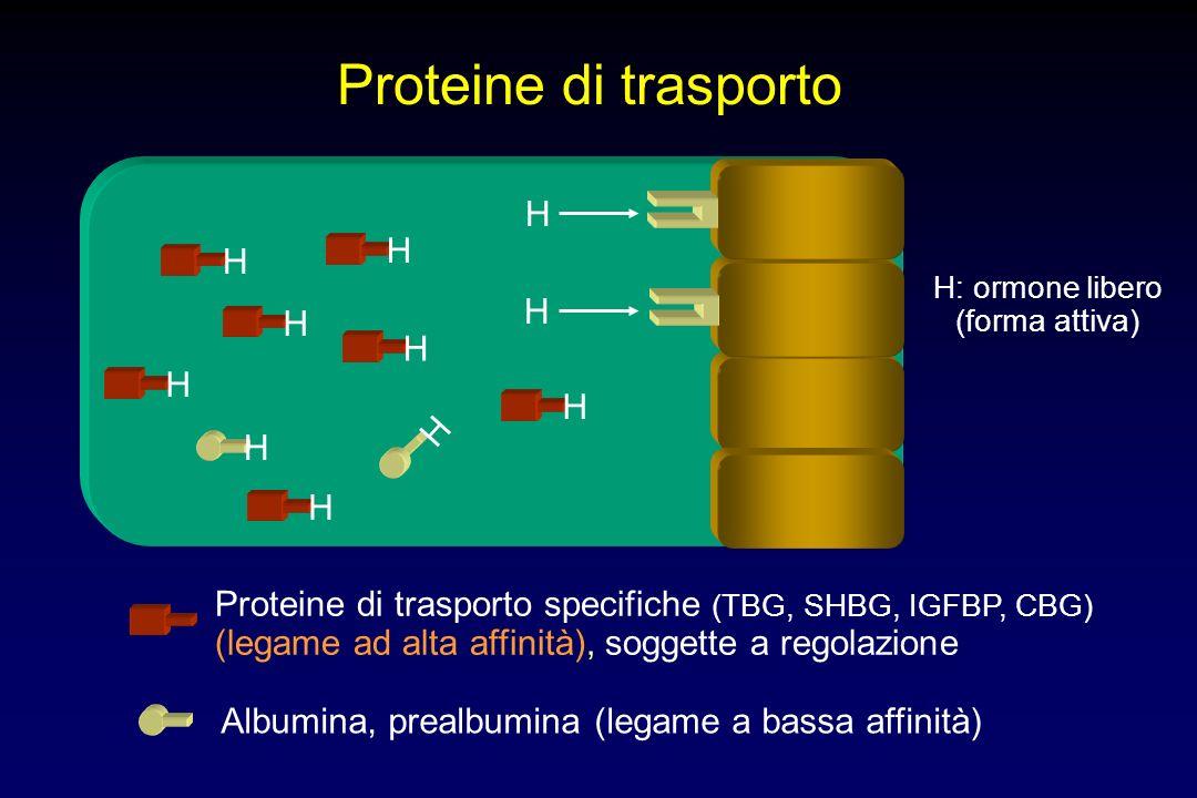 Proteine di trasporto H H H H H H H H H H H