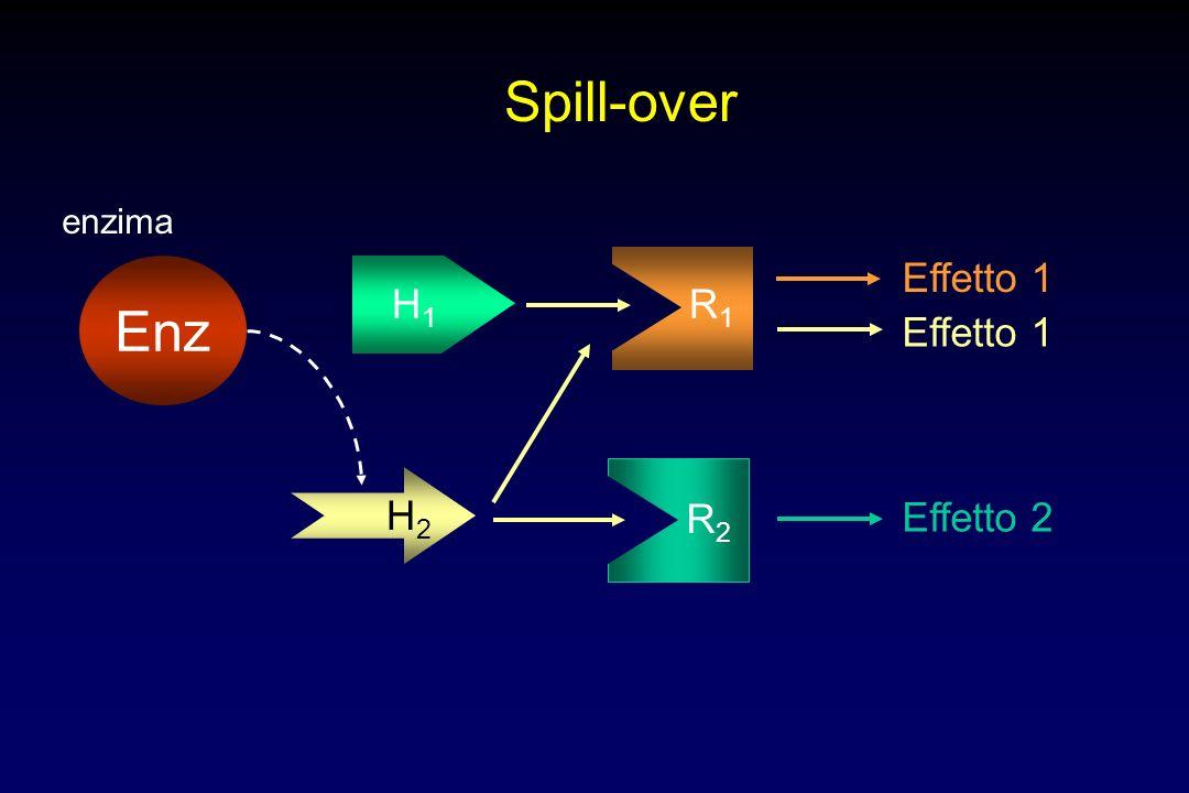 Spill-over Enz enzima H1 R1 Effetto 1 Effetto 1 H2 R2 Effetto 2