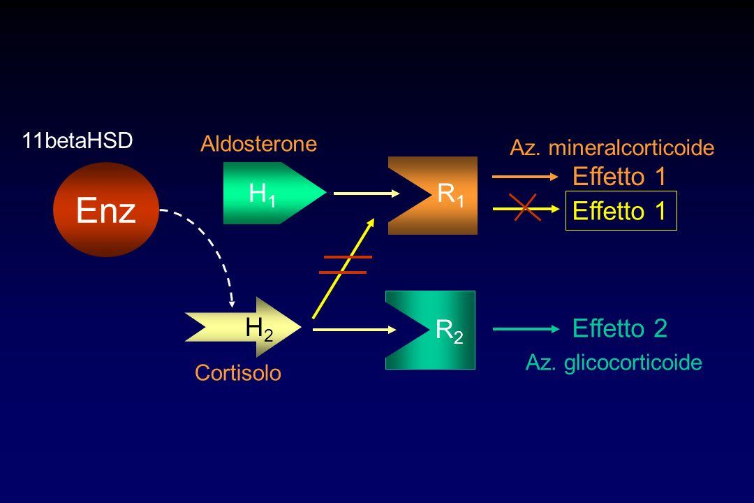Enz H1 R1 Effetto 1 Effetto 1 H2 R2 Effetto 2 11betaHSD Aldosterone