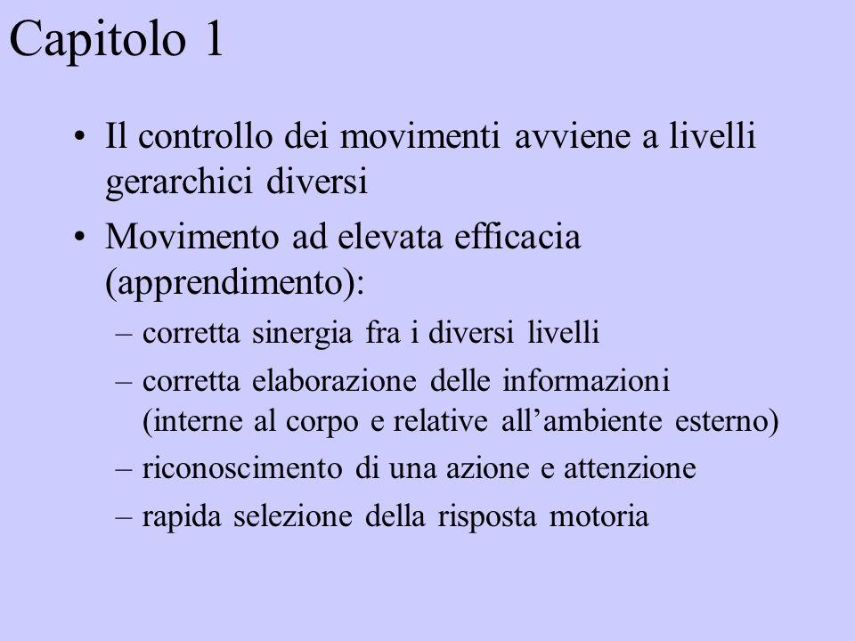 Capitolo 1 Il controllo dei movimenti avviene a livelli gerarchici diversi. Movimento ad elevata efficacia (apprendimento):