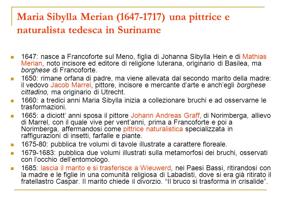 Maria Sibylla Merian (1647-1717) una pittrice e naturalista tedesca in Suriname