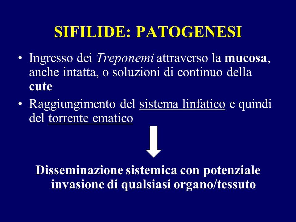 SIFILIDE: PATOGENESI Ingresso dei Treponemi attraverso la mucosa, anche intatta, o soluzioni di continuo della cute.