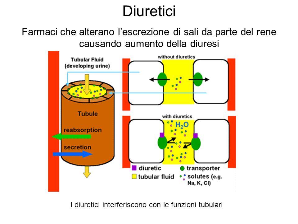 I diuretici interferiscono con le funzioni tubulari
