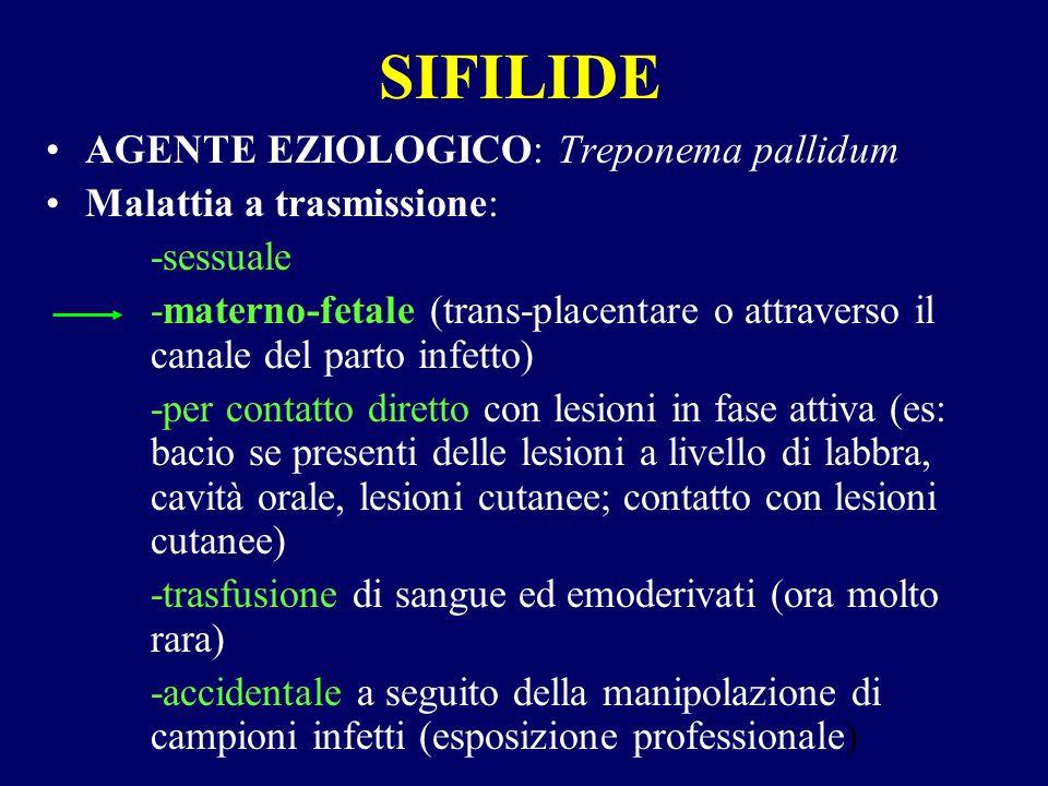 SIFILIDE AGENTE EZIOLOGICO: Treponema pallidum
