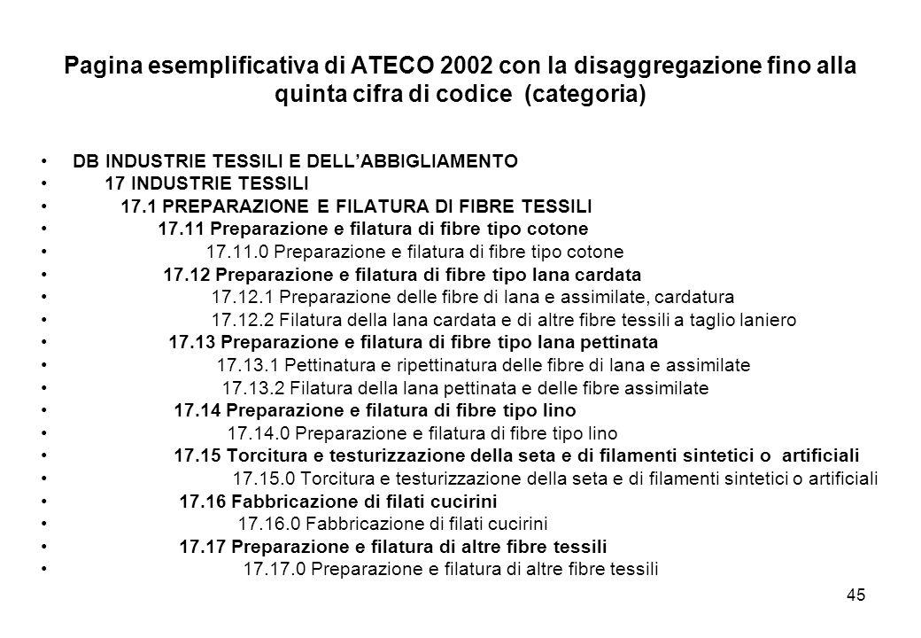 Pagina esemplificativa di ATECO 2002 con la disaggregazione fino alla quinta cifra di codice (categoria)
