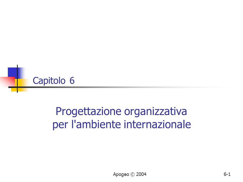 Progettazione organizzativa per l ambiente internazionale