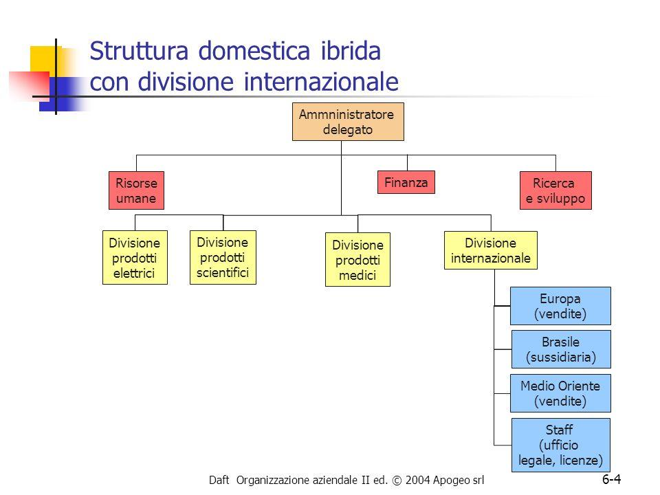 Struttura domestica ibrida con divisione internazionale