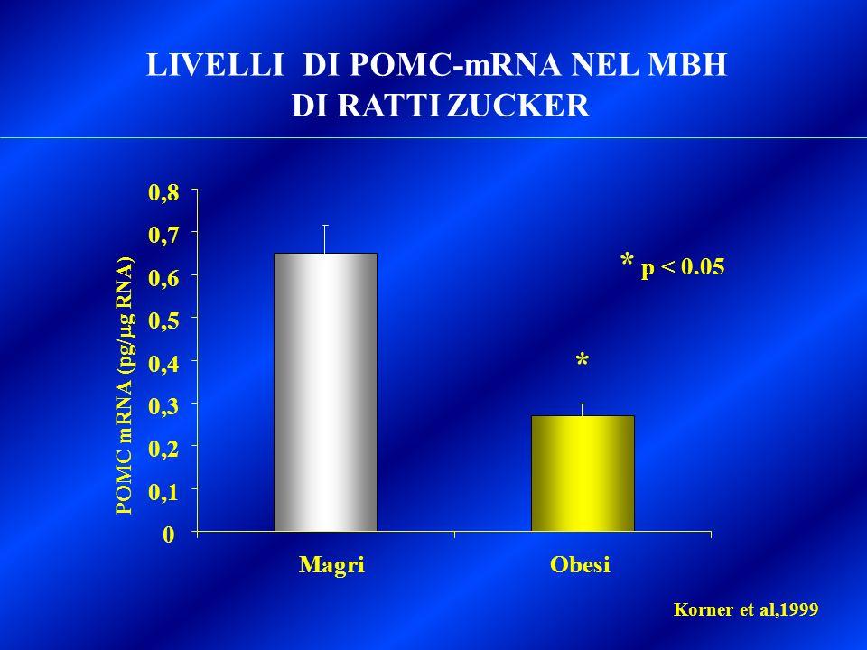 LIVELLI DI POMC-mRNA NEL MBH