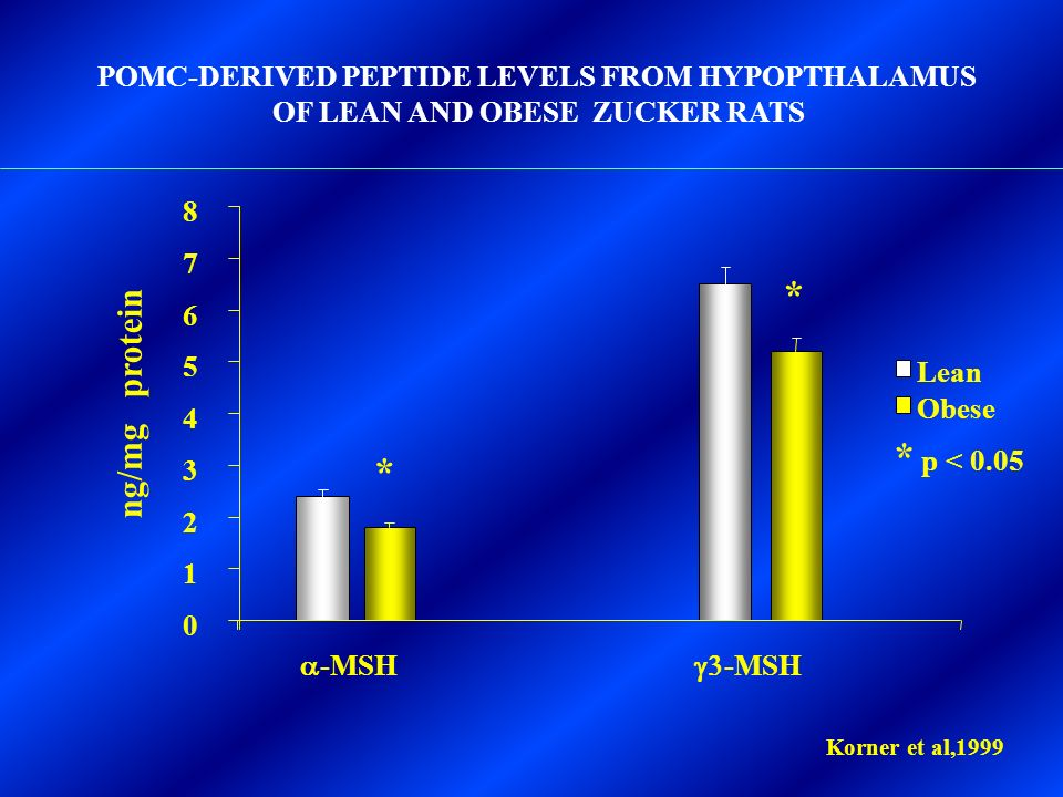 POMC-DERIVED PEPTIDE LEVELS FROM HYPOPTHALAMUS