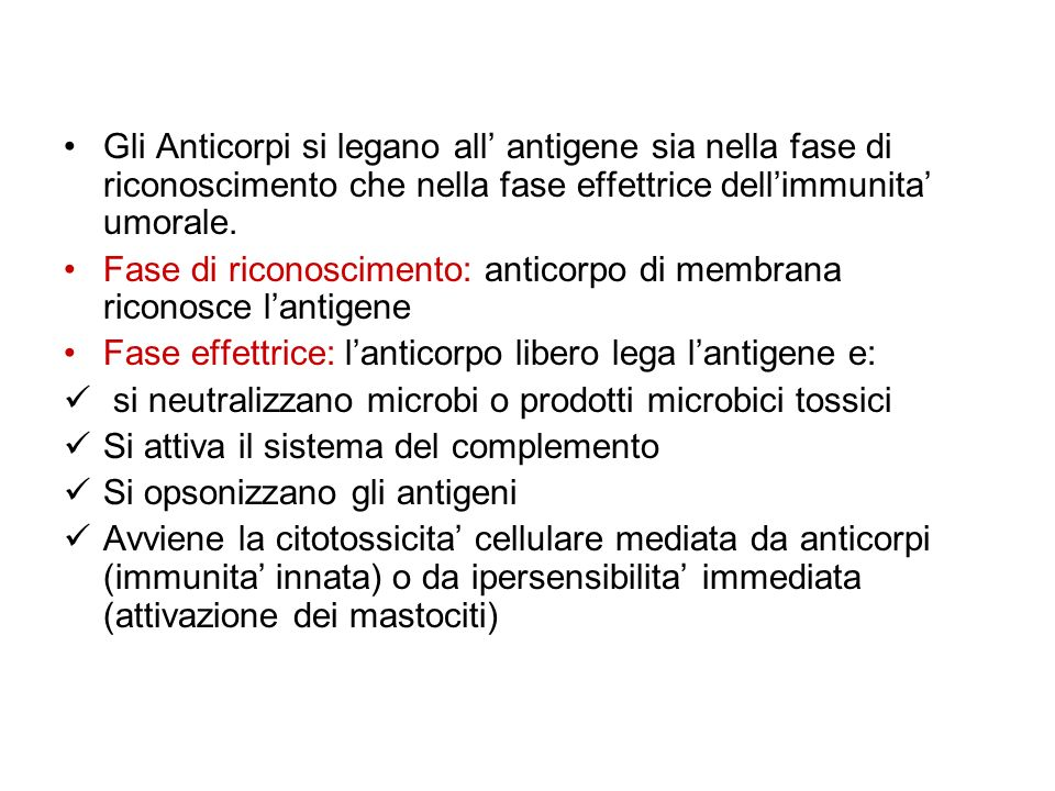 Gli Anticorpi si legano all' antigene sia nella fase di riconoscimento che nella fase effettrice dell'immunita' umorale.