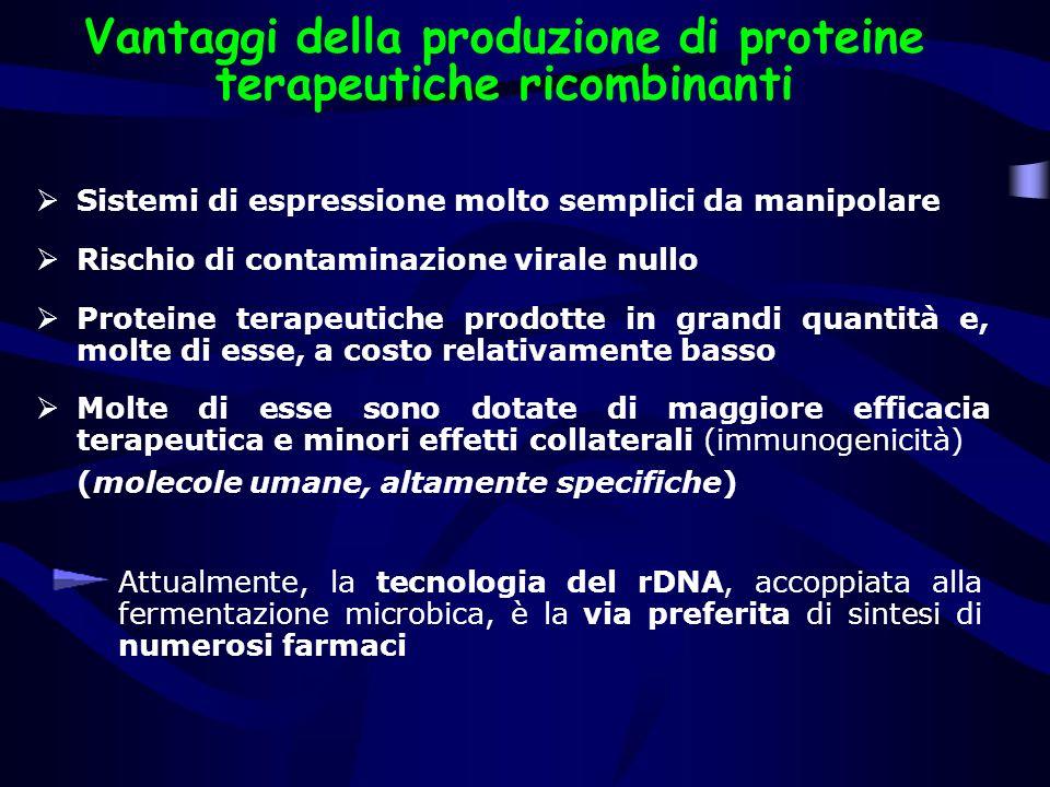 Vantaggi della produzione di proteine terapeutiche ricombinanti