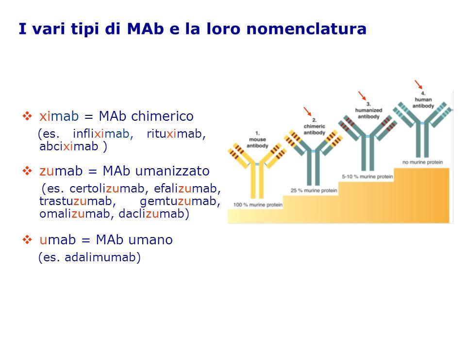 I vari tipi di MAb e la loro nomenclatura