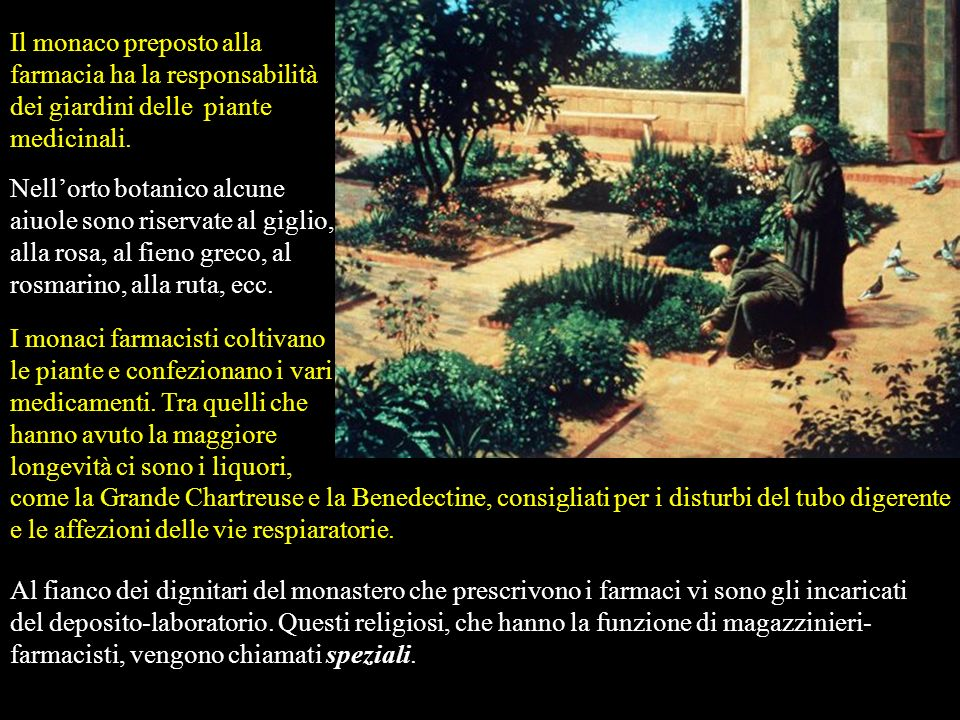 Il monaco preposto alla farmacia ha la responsabilità dei giardini delle piante medicinali.