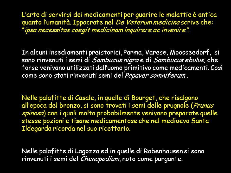 L'arte di servirsi dei medicamenti per guarire le malattie è antica quanto l'umanità. Ippocrate nel De Veterum medicina scrive che: ipsa necessitas coegit medicinam inquirere ac invenire .