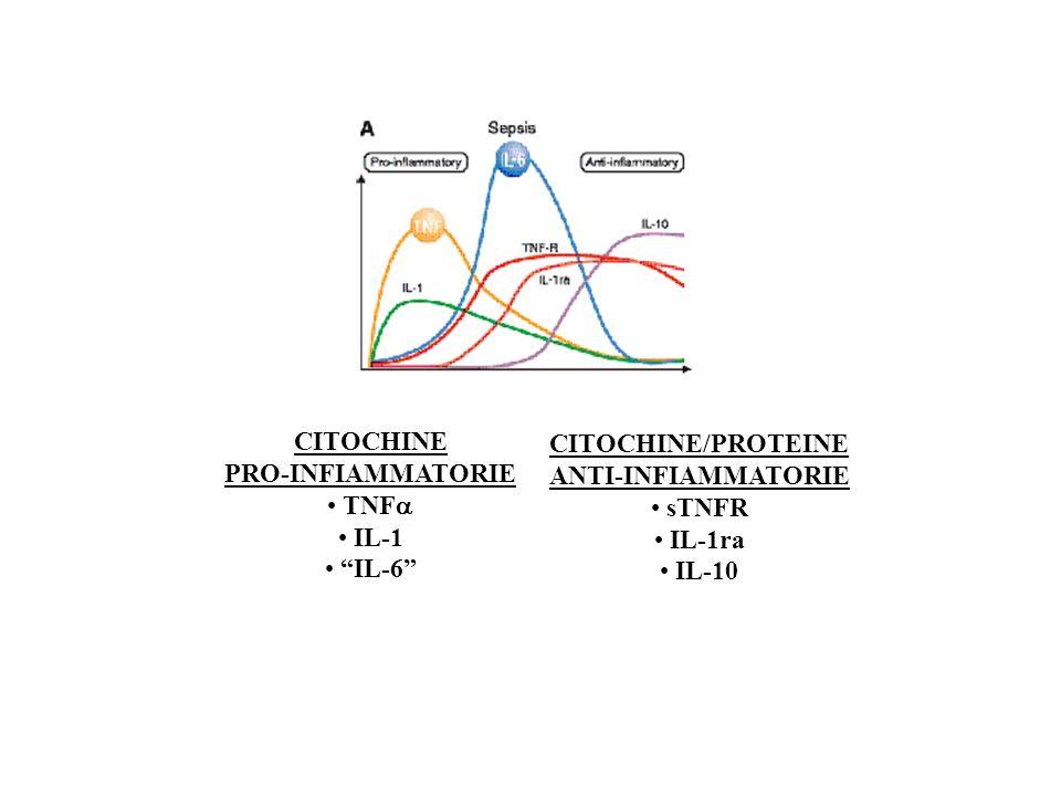 CITOCHINE PRO-INFIAMMATORIE. TNFa. IL-1. IL-6 CITOCHINE/PROTEINE. ANTI-INFIAMMATORIE. sTNFR.