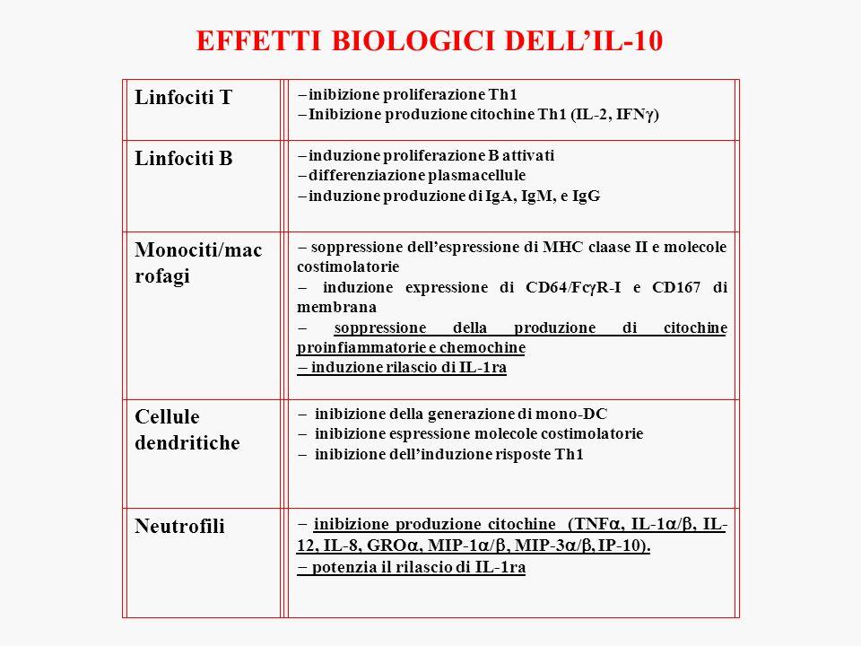 EFFETTI BIOLOGICI DELL'IL-10