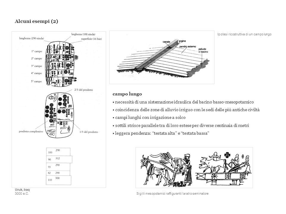 Alcuni esempi (2) campo lungo