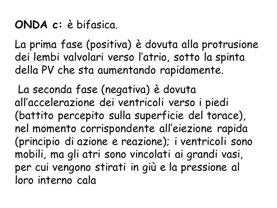 ONDA c: è bifasica.
