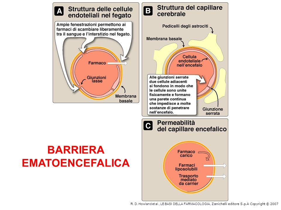 BARRIERA EMATOENCEFALICA
