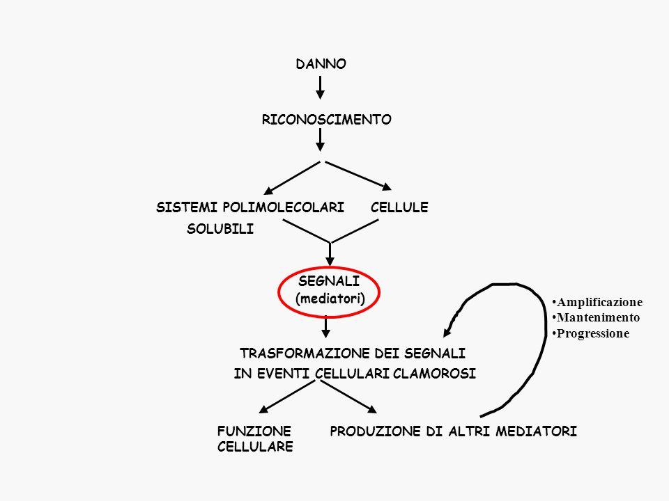 SISTEMI POLIMOLECOLARI CELLULE