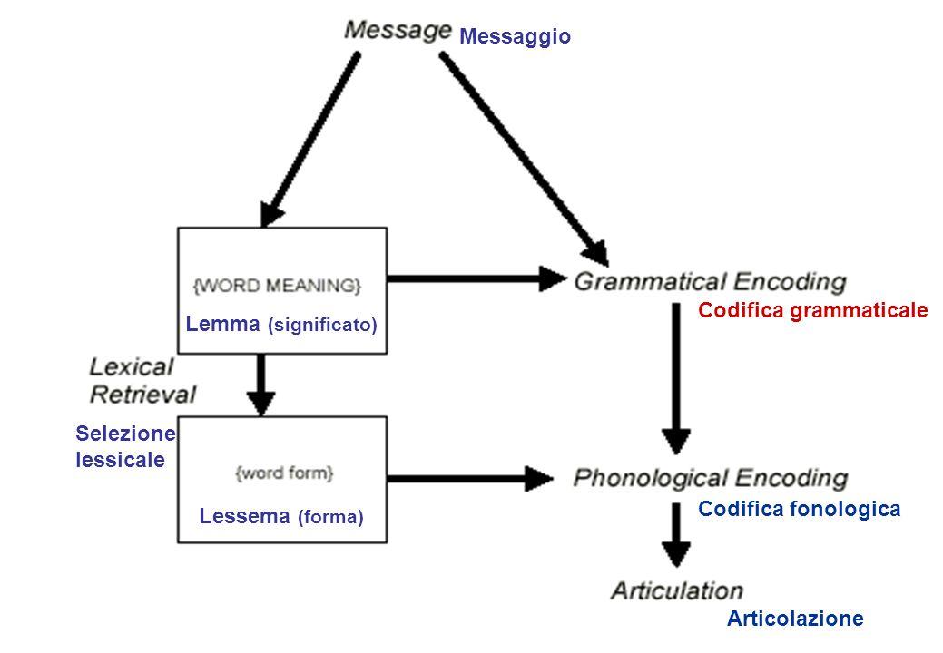 Messaggio Codifica grammaticale. Lemma (significato) Selezione lessicale. Codifica fonologica. Lessema (forma)