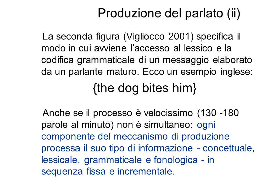 Produzione del parlato (ii)