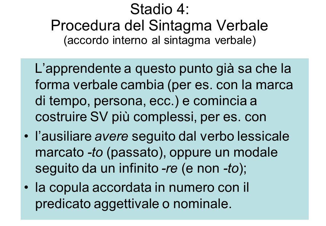 Stadio 4: Procedura del Sintagma Verbale (accordo interno al sintagma verbale)
