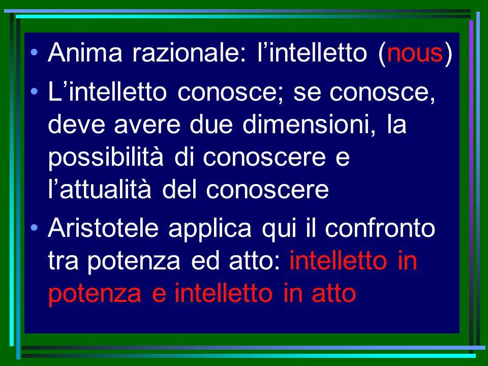 Anima razionale: l'intelletto (nous)