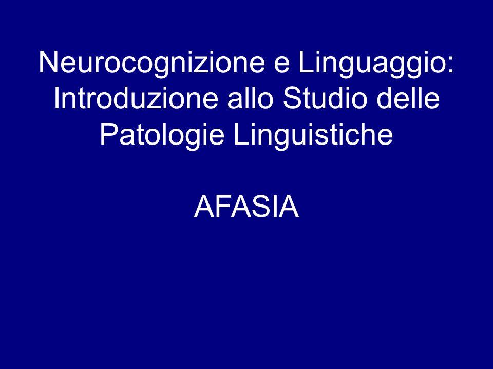 Neurocognizione e Linguaggio: Introduzione allo Studio delle Patologie Linguistiche AFASIA