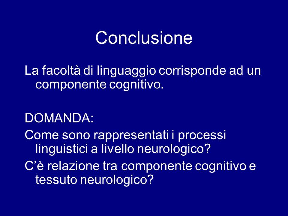 Conclusione La facoltà di linguaggio corrisponde ad un componente cognitivo. DOMANDA: