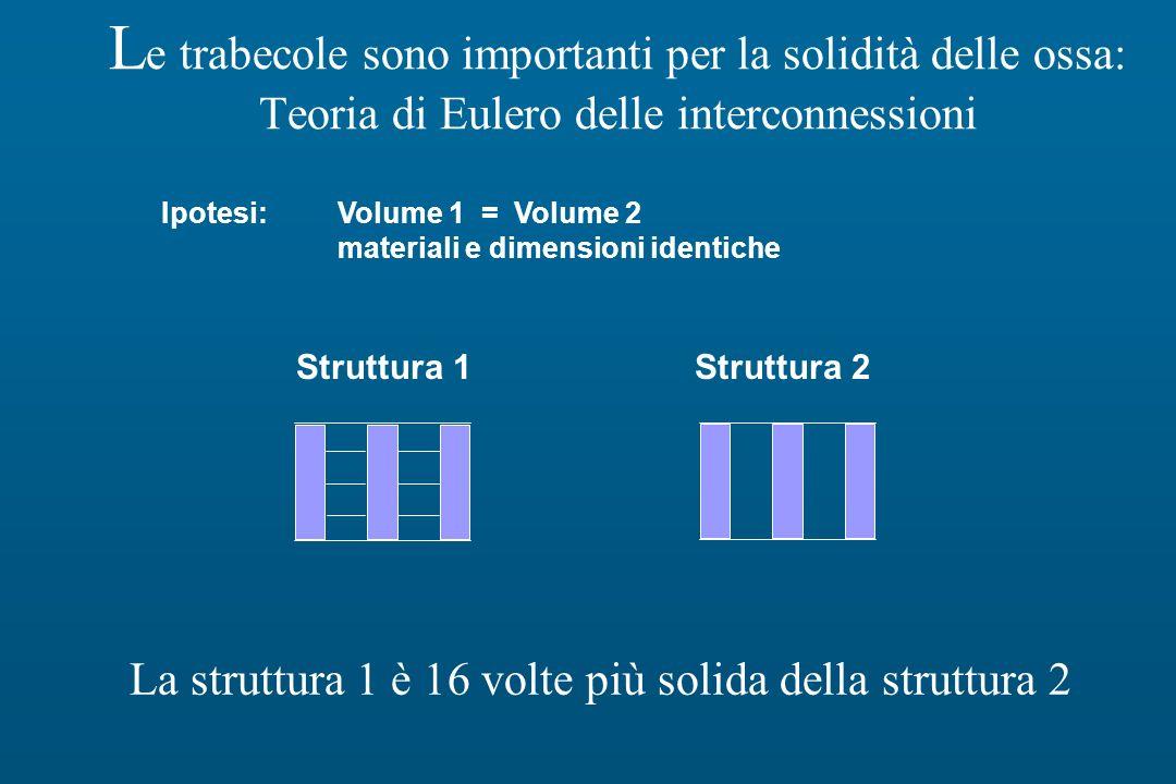 La struttura 1 è 16 volte più solida della struttura 2