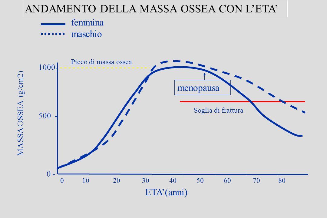 ANDAMENTO DELLA MASSA OSSEA CON L'ETA'