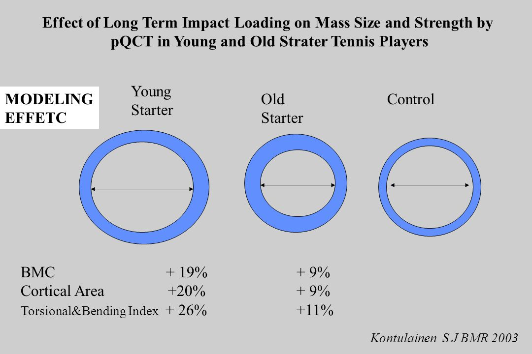 Effect of Long Term Impact Loading on Mass Size and Strength by