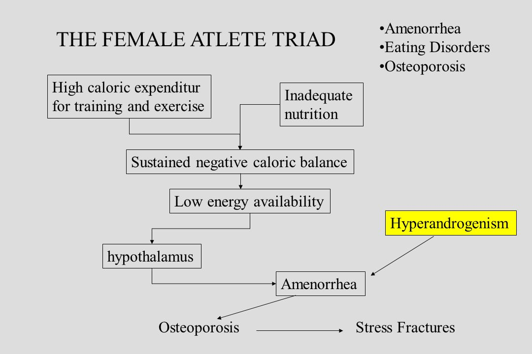 THE FEMALE ATLETE TRIAD