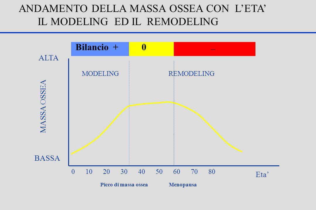ANDAMENTO DELLA MASSA OSSEA CON L'ETA' IL MODELING ED IL REMODELING