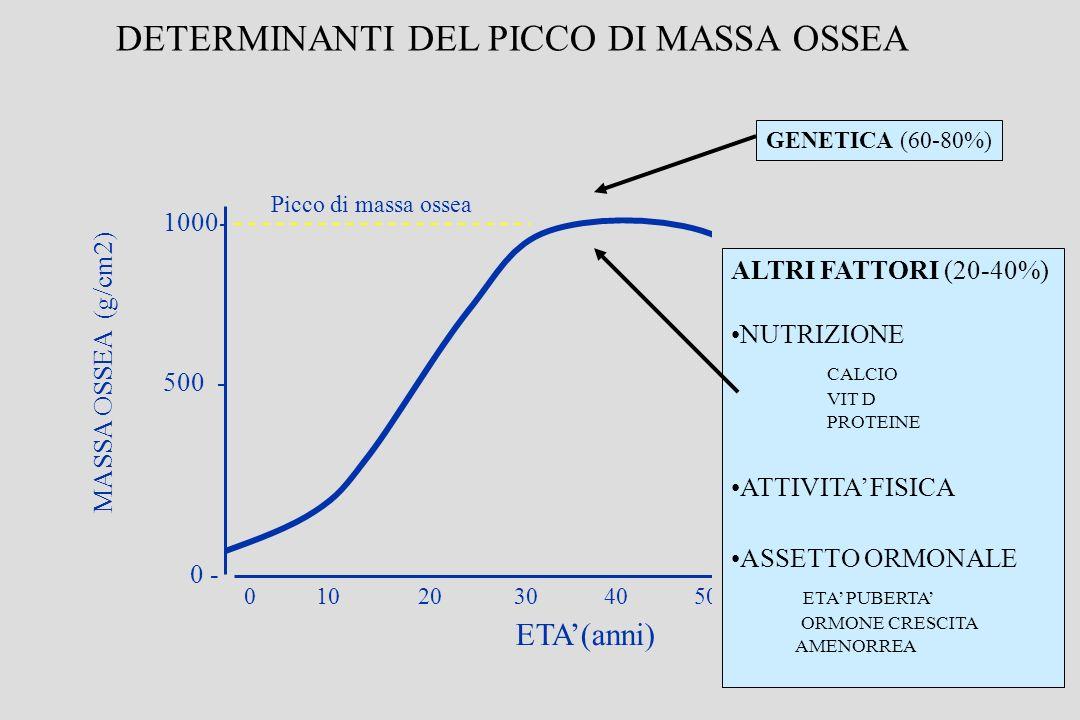 DETERMINANTI DEL PICCO DI MASSA OSSEA
