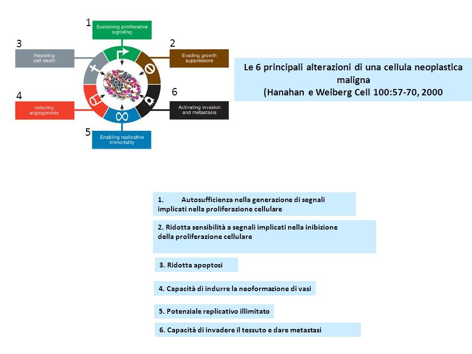 1 3 2 6 4 5 Le 6 principali alterazioni di una cellula neoplastica