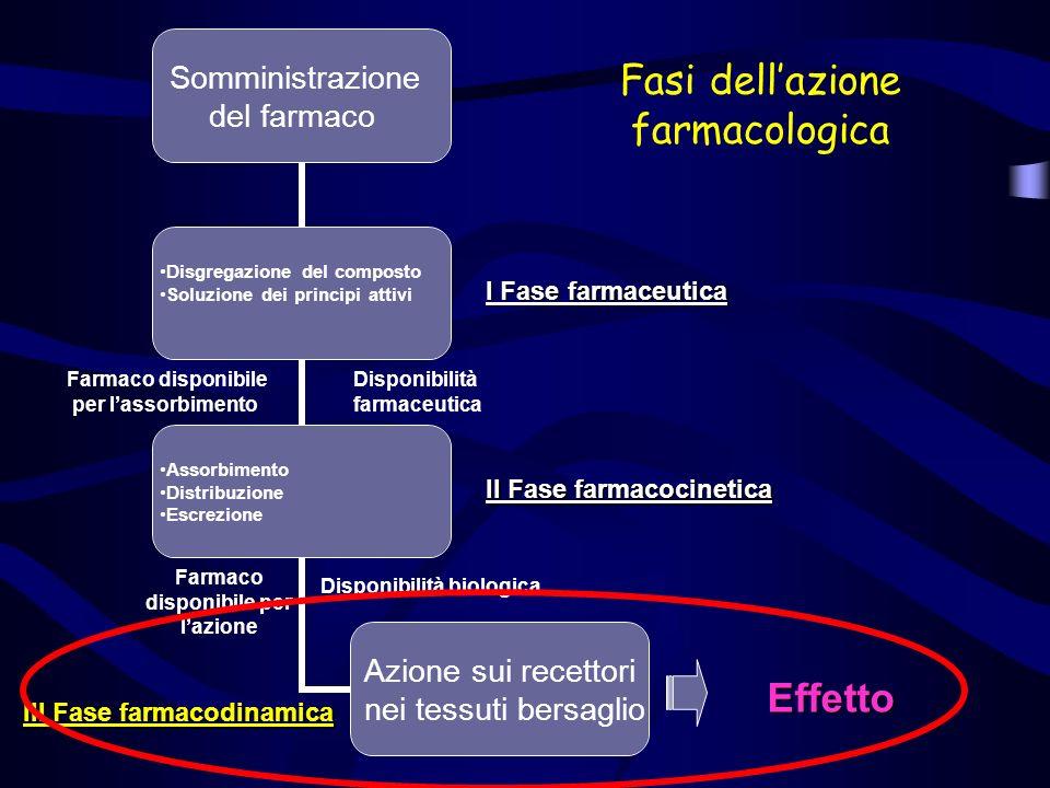 Fasi dell'azione farmacologica