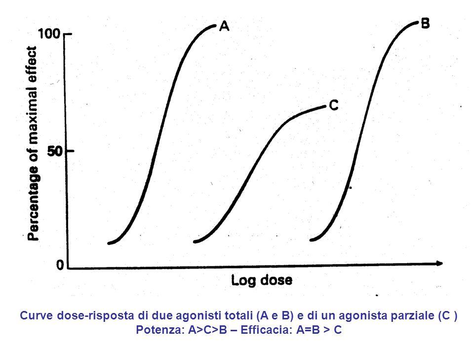 Potenza: A>C>B – Efficacia: A=B > C
