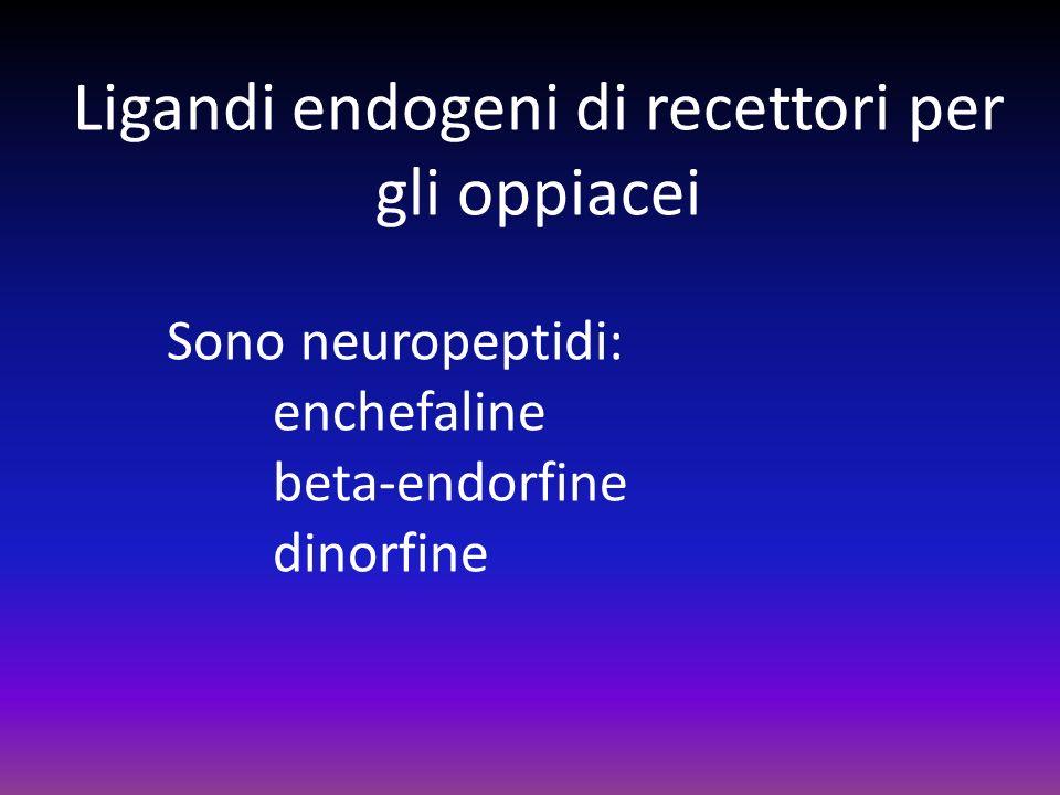 Ligandi endogeni di recettori per gli oppiacei