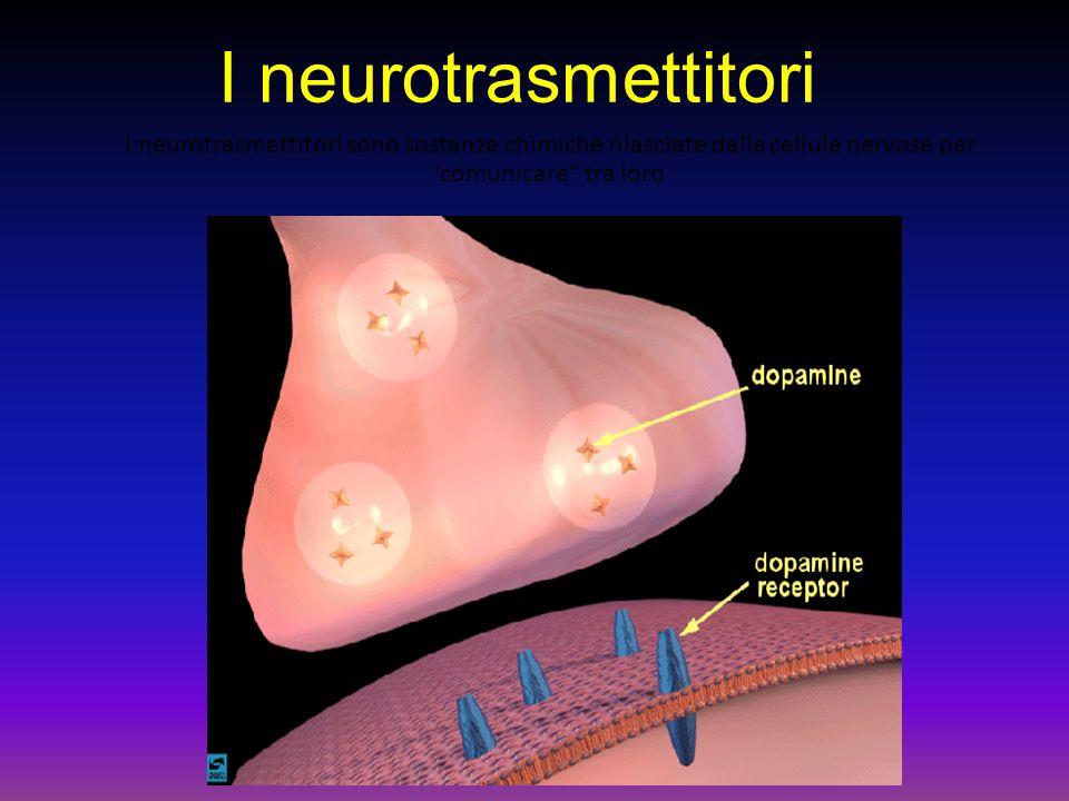 I neurotrasmettitori I neurotrasmettitori sono sostanze chimiche rilasciate dalle cellule nervose per comunicare tra loro.